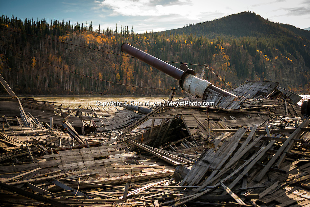 Dawson City, Yukon Territory, Canada, September 2014. Remnants of the Gold Rush: historic paddle wheeler steamers lay rotting on the banks of the Yukon River, overgrown by trees and bushes. Dawson City was the epi centre during the Klondike Gold rush. Today the town is a mix of historical buildings, tourist attractions and current day gold miners. With scenic drives in abundance, the Yukon Territory is a driver's dream. The territory boasts a network of well-maintained highways leading through an exhilarating combination of postcard scenery, historic communities, cultural attractions and adventure outings.The Yukon Territory received world fame during the Klondike Gold Rush in 1898.  Photo by Frits Meyst / MeystPhoto.com