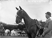 Equestrian sports in Ireland in the 1950s