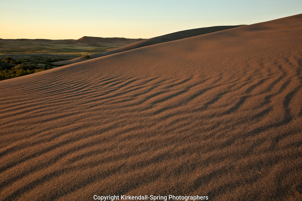 ID00654-00...IDAHO - Early morning at Bruneau Dunes State Park near Mountain Home.