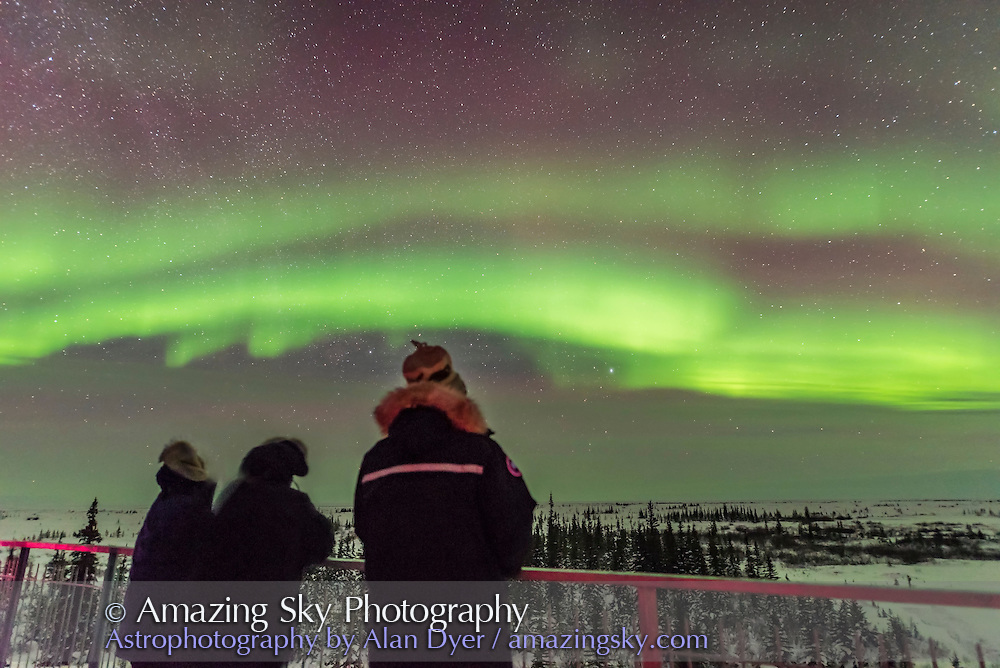 People from the March Road Scholar group take in the start of a fine display of Northern Lights from the upper deck of the Churchill Northern Studies Centre, on March 9, 2016, the first night of their 5-night stay.