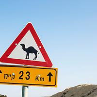 Israel, Camel crossing warning sign on highway on highway approaching Dead Sea region