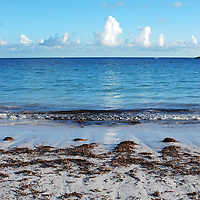 Shoreline and seaweed awash on Abaco Bay, Bahamas
