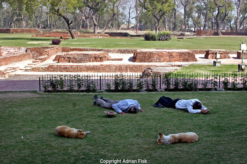 Dogs sleep whilst men pay homage to the historically important site of Sarnath in Varanasi. Sarnath is where Buddha first gave his sermon, Buddhists from all over the world come to visit the site.