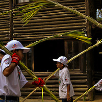 PALMEROS OF CHACAO / PALMEROS DE CHACAO