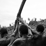 For three months of the year, on the remote South Pacific island of Pentecost, the tradition of land diving takes place. A tower is built from timber and vines collected from the hills around the dive site. Diving takes place between March and June when the vines are strong. The death defying dives are performed each Saturday, or when tourist cruise ships visit the Island throughout these months. The local tribes around Lonohore gather to perform the land diving as a sporting spectacle for the tourists visiting the island. A vine is tied to each ankle of the divers and the men and boys dive from different levels, some as high as ten meters.&nbsp;&nbsp; <br /> They hurl themselves off the platform diving at the solid ground below and are saved only by the vines which pull them back from the jaws of death inches from the ground. <br /> Land diving is an ancient tradition on the island and is now considered 'professional' by the divers who are rewarded for there dives by the money paid by tourists visiting the land dive site. But the money doesn't go to the individual; it goes to the village of the diver to help support that community. The divers are paid according to which jump level platform they dive off, which ranges from around A$6 from the lowest platform to A$30 for diving from the highest platform.<br /> <br /> Villages during the construction of the Land Diving tower on the hillside at Lonorore, Pentecost.