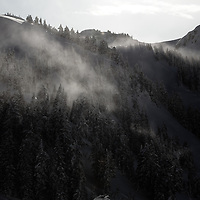 The mist burns off the trees as the sun comes up near Whistler, BC
