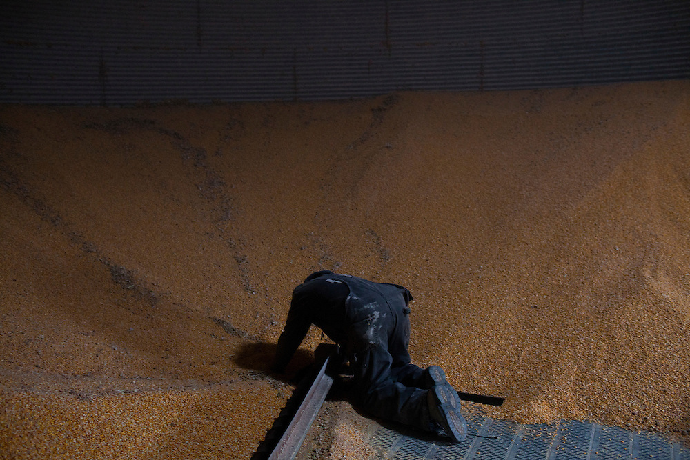 Mark Nelson works inside a corn silo on Wednesday, November 30, 2011 in Webster City, IA.