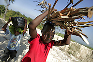 Youngsters carry the supplies their home needs up the mountain above Carrefour, Haiti.  The front boy carries firewood while the smaller one carries other items that they collected from fields on the side of the road.  The entire family is asked to contribute to their wellbeing.  The boys usually collect firewood, while the girls collect water at the natural spring high on the mountain.