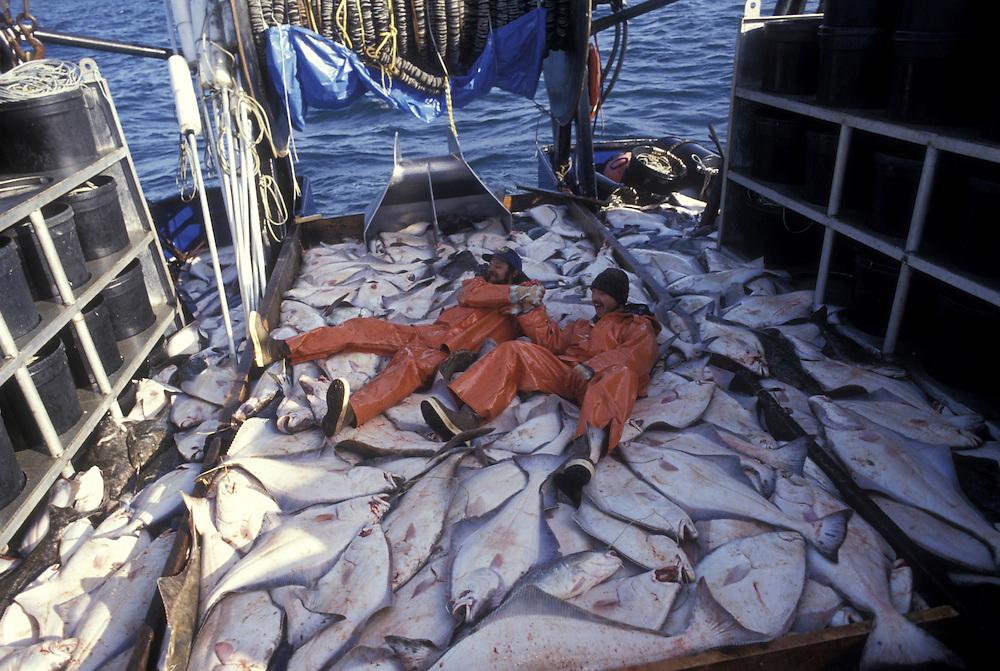 USA, Alaska, (MR) Commercial fishermen Greg Caisse and Jack Pitman celebrate end of 24 hour halibut fishery off Kodiak Island