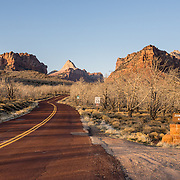Kolob Terrace Road entrance to Zion National Park, Springdale, Utah, USA. The North Fork of the Virgin River carved spectacular Zion Canyon through reddish and tan-colored Navajo Sandstone up to half a mile (800 m) deep and 15 miles (24 km) long. Uplift associated with the creation of the Colorado Plateaus lifted the region 10,000 feet (3000 m) starting 13 million years ago. Zion and Kolob canyon geology includes 9 formations covering 150 million years of mostly Mesozoic-aged sedimentation, from warm, shallow seas, streams, lakes, vast deserts, and dry near-shore environments. Mormons discovered the canyon in 1858 and settled in the early 1860s. U.S. President Taft declared it Mukuntuweap National Monument in 1909. In 1918, the name changed to Zion (an ancient Hebrew name for Jerusalem), which became a National Park in 1919. The Kolob section (a 1937 National Monument) was added to Zion National Park in 1956. Unusually diverse plants and animals congregate here where the Colorado Plateau, Great Basin, and Mojave Desert meet.