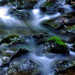 Slow creek rapids, Muir National Forest, California