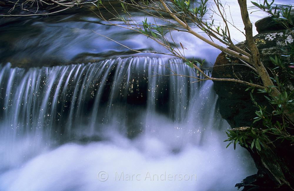 Water rushing down a creek called Kangaroo Creek, Royal National Park, Australia.