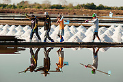Mar 23, 2009 -- SAMUT SONGKHRAM, THAILAND: Workers walk out of a salt field near Samut Songkhram, Thailand. The salt farms between Samut Sakhon and Sumat Songkhram are Thailand's largest salt producing region. Salt is typically harvested for about six months of the year. The fields are prepared for salt farming as soon as the rainy season ends. First the fields are tamped down so they hold water, then they are flooded with salt water from either the Gulf of Siam or the Mae Khlong River (both are salty). After about two months, the first harvest is ready. The fields are drained and the salt picked up from the fields. Then the fields are flooded again and the process repeated. As the season goes on and the fields become saltier, the amount of time they are flooded is reduced till the end of the season when they may only be flooded for two or three days. Most of the workers in the salt fields are migrant workers from Isaan, an impoverished region in the northeast of Thailand. Once the rainy season starts and it's no longer possible to harvest salt the workers go home to work their small farms.    Photo by Jack Kurtz