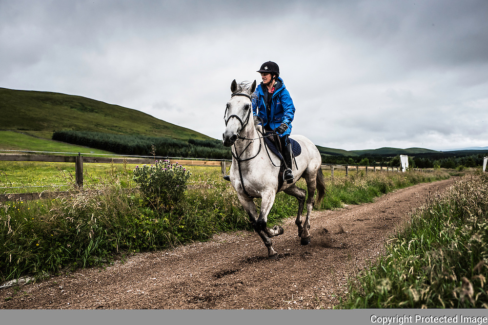 Strip End, Camptown, Jedburgh, Scottish Borders, UK. 22nd July 2016. Horses and ponies enjoy a gallop on the all weather gallops of Harriet Graham racing during a 'Pleasure Ride'.