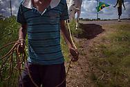 Junco do Maranhao, Brazil, June 26 of 2013:  Bolsa Familia em Junco do Maranhao. Meninos cuidam de touro usado em transporte de carroça. (photo: Caio Guatelli)