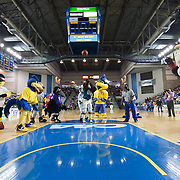 Philadelphia Eagles SWOOP shoots a free throw during a halftime show of a NCAA college basketball game against #9 Delaware and Northeastern Sunday, Feb. 26, 2012 at the Bob Carpenter Center in Newark, Del.