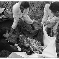 Kosovo.March 2002.The Missing Persons Unit of the United Nations police in Kosovo recovers bodies for identication from fields, graveyards, and mass graves all over Kosovo.
