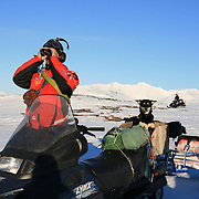 Reindeer herders in the Mid-Norway mountains Sylene. Using snowmobiles guarding the herd while they are moving from winter to summer pastures by the Skarvene og Roltdalen national park.