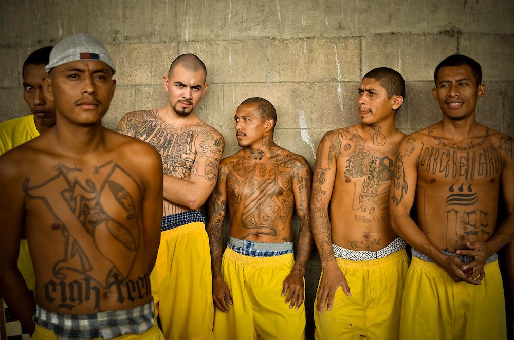 prison gangs essay