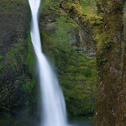 Horsetail Falls, one of many scenic waterfalls in Oregon's Columbia Gorge, drops about 50 feet (15 metres). This waterfall is located between the Oneonta Gorge and Ainsworth State Park.