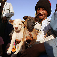 SIEM REAP, NOVEMBER-28:  rural workers sit in a truck with their dogs in Siem Reap before they return to the countryside, Siem Reap, November 28, 2006, Cambodia. One of the world's poorest countries, the majority of Cambodia's population (about 74%) is employed in agriculture...