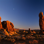 Rock climber stands atop a rederock pinnacle in the Garden of Eden, Arches National park, Utah.