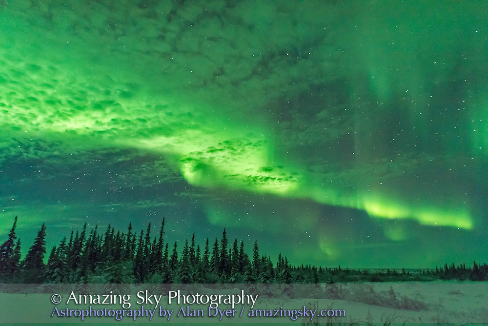 A brightening aurora behind thin clouds lighting the clouds and ground green, January 29, 2017, from the Churchill Northern Studies Centre, Churchill, Manitoba. This is one frame from a 150-frame rapid-cadence time-lapse, for 1 second exposure at f/1.4 with the Sigma 20mm Art lens and Nikon D750 at ISO 3200.