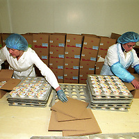 Workers at Rodda's Creamery in Scorrier in Cornwall, England's largest clotted cream makers..Photo©Steve Forrest/Workers' Photos