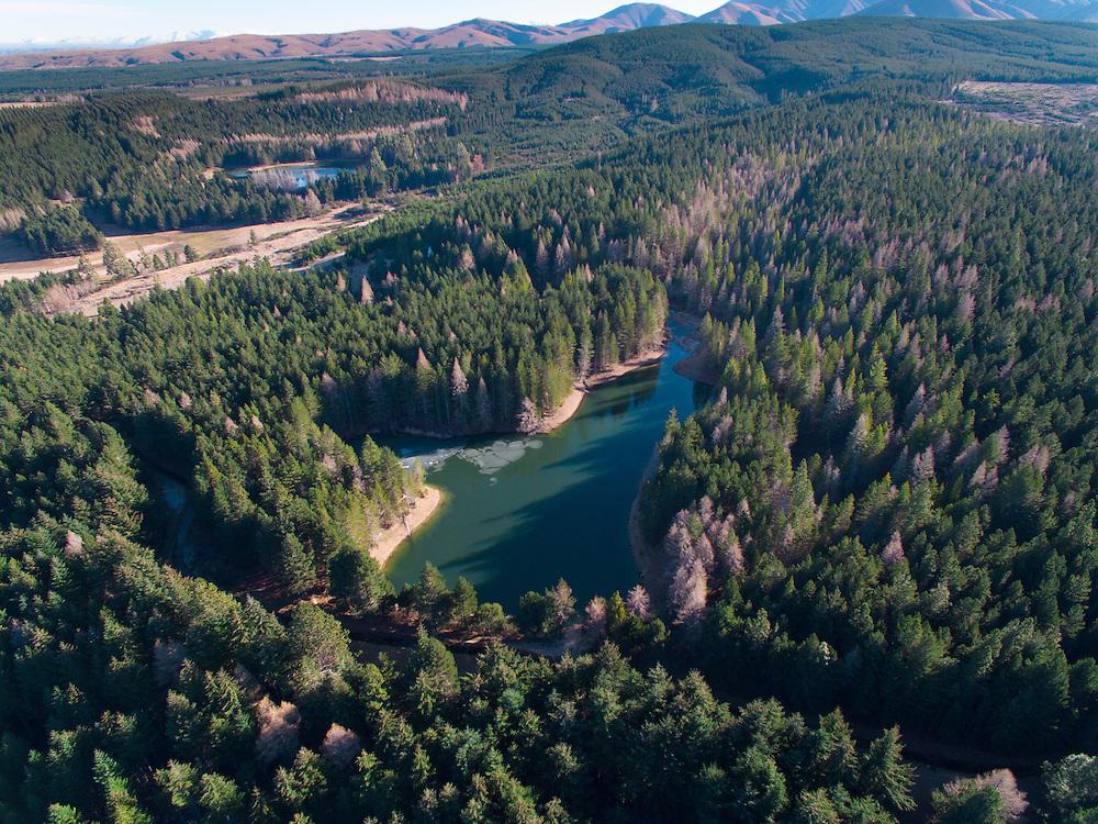 Coalpit dam, Naseby forest, Central Otago