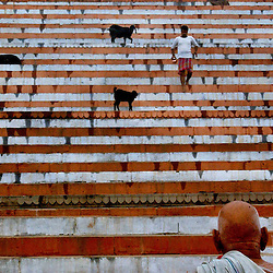 Ganges-Shrine-The steps leading to a shrine on the holy Ganges river are filled with early morning bathers and sheep December 11, 2001 in Varanasi, India.  The late George Harrison, a longtime devotee of Hinduism, reportedly left over a million dollars to build a temple in the holy city of Varanasi  according to Hare Krishna devotees. The news came as hundreds of Harrison fans still waited expectantly by the banks of the River Ganges for his ashes to arrive, amid confusion on how they were to be scattered.