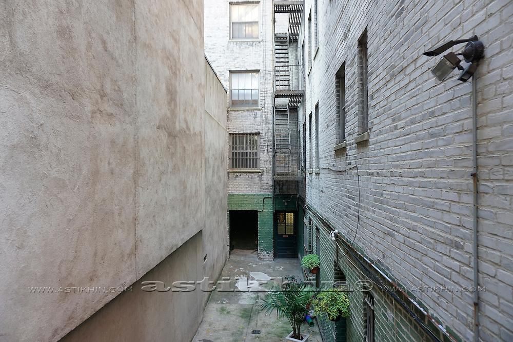 Backyard in Manhattan, New York City, USA.