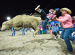 PRICE CHAMBERS / NEWS&GUIDE.Dally Wilson, 4, gets a wild ride as the sheep she's riding jumps out of the gate. Jared Kuhns safely peels her off it's back during the final Jackson Hole Rodeo of the season.