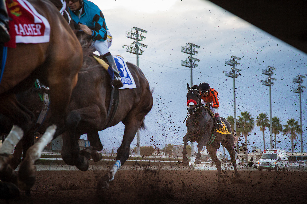 December 19, 2015: Sorryaboutnothing at the Futurity at Los Alamitos Race Track in Cypress California. Evers/ESW/CSM