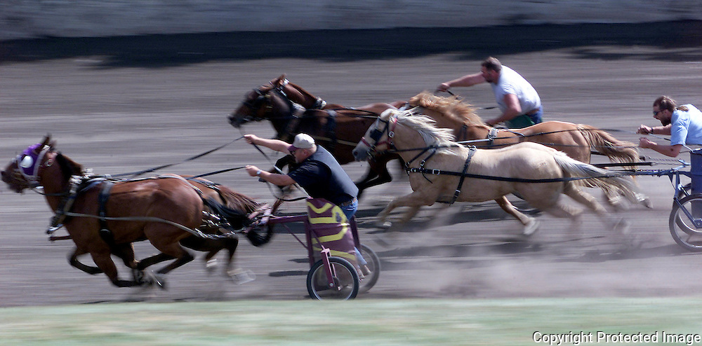 spencer, sept. 12 -- Competitors in the chariot races speed along the oval racetrack at the Clay County Fair in Spencer Thursday.  This event, along with chuck wagon races are held for two days every year at the fair.