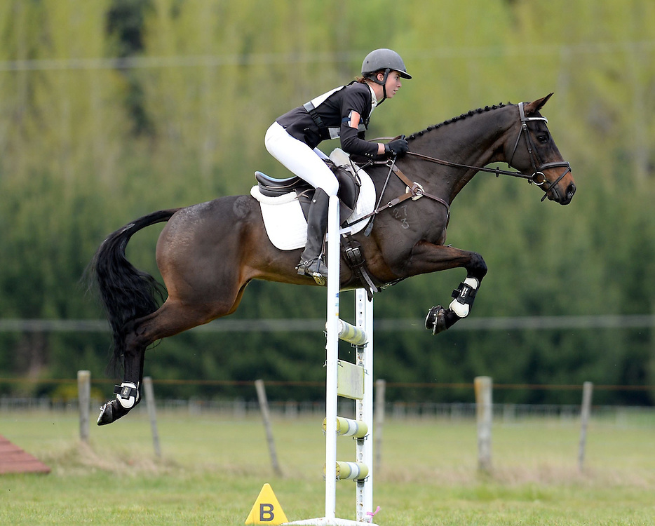 Jessica Woods rides Defies Logic in the FEI 3 * Show Jumping Phase, NEC Spring Horse Trial, National Equestrian Centre, Taupo, Saturday, October 11, 2014. Credit:  SNPA /Sarah Alderman