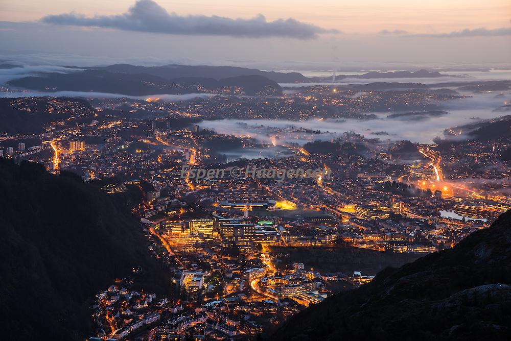 Bergen closeup