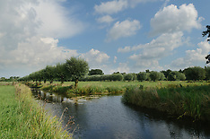 Goudse hout, Gouda, Netherlands