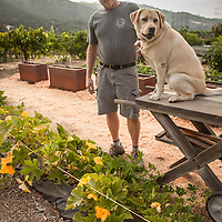 Cabinet maker Ray Smith in his garden with his dog, Kiah, in Cloverdale, CA.