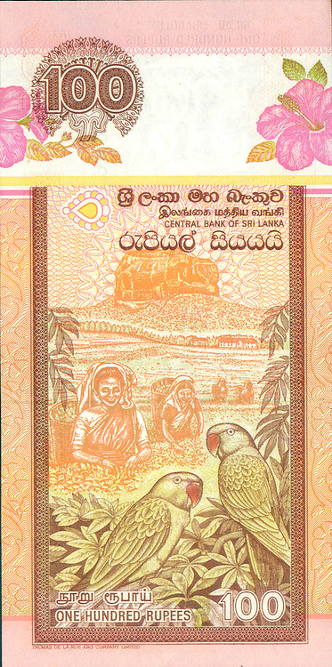 Credit to Dr. Kavan Ratnatunga. lakdiva.org<br /> Images of the Sri Lanka currency notes with a Tea Theme.<br /> <br /> The 1991 Rs100 in Sri Lanka Heritage  series had four tea pluckers in portrait format back<br /> It was issued with small color and design changes till 2006
