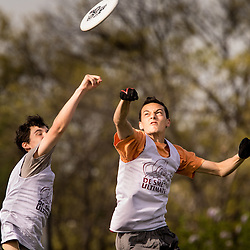 Lisa Johnston | lisajohnston@archstl.org | Twitter: @aeternusphoto<br /> Jack Hummel and Alex LaBarge jumped together to get the frisbee pass. <br /> DeSmet Jesuit High School's Ultimate Frisbee team is have won eight championships in a row and are in the middle of another winning season.