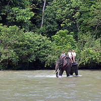 Elephant trekking in Tangkahan on the edge of Gunung Leuser National Park.