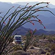 California: deserts