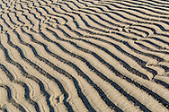 Focus stacking composite of low tide patterns abstract in sand of Kachemak Bay along the Homer Spit in Homer in Southcentral Alaska. Spring. Evening.