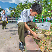 CAPTION: Glen Tagura inspects a small rainwater harvesting system. rain collects in this bottle and slowly leaches out into the soil. Glen and his fellow students at Parang High School recently attended a climate change workshop run by the local government and facilitated by ACCCRN's implementing partners, ICLEI. This helps to reinforce their knowledge of climate change impacts, mitigation and adaptation, and since attending the workshop they have been more active around their school, practicing mitigation and adaptation solutions and training other students in the same skills. LOCATION: Parang High School, Marikina City, Philippines. INDIVIDUAL(S) PHOTOGRAPHED: Glen Tagura.