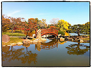 Scene from Osaka Gardens at Jackson Park in Chicago. Taken with iPhone using PS Express app. (Sam Lucero photo)