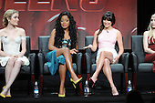 8/6/2015 - 2015 Fox Summer TCA Panels - Originals