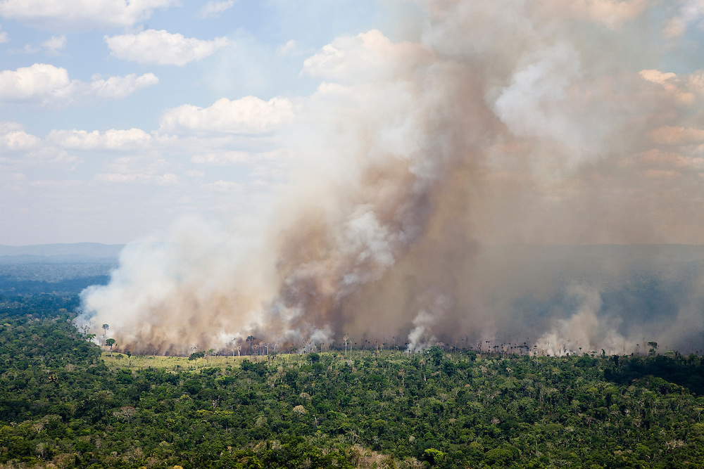 Fires burn the Amazon rainforest to clear the ground for cattle or crop farming in Altamira municipality, Para State, Brazil, August 13, 2008..Daniel Beltra/Greenpeace