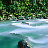 Nooksack River, Mt Baker Wilderness Area.Northwest Washington State, USA.4x5 Transparency.©2000 Brett Baunton