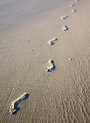 Footprints in the sand at Lombadina
