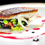 """SHOT 2/20/12 4:27:40 PM - Alamosa Striped Bass with beluga lentils, edamame, hearts of palm, celery leaf and blood orange and balsamic $27. TAG restaurant on Larimer Square in downtown Denver, Co. TAG is owned and operated by chef/owner Troy Guard. TAG features what they term """"continental social food"""" and features influences from numerous continents. .(Photo by Marc Piscotty / © 2012)"""